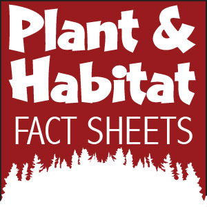 Plant and Habitat Fact Sheets