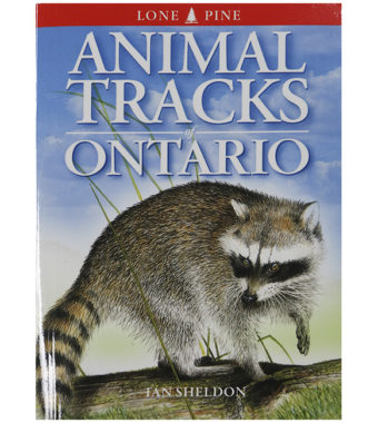 animaltracks-book