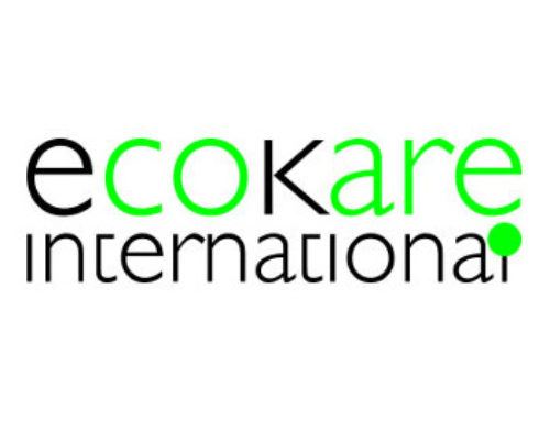 Traffic Injury Research Foundation & Eco-Kare International