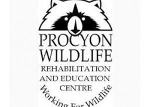 Procyon Wildlife Rehabilitation & Education Centre
